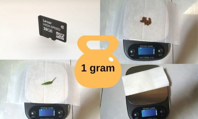 Common Items That Weigh 1 Gram